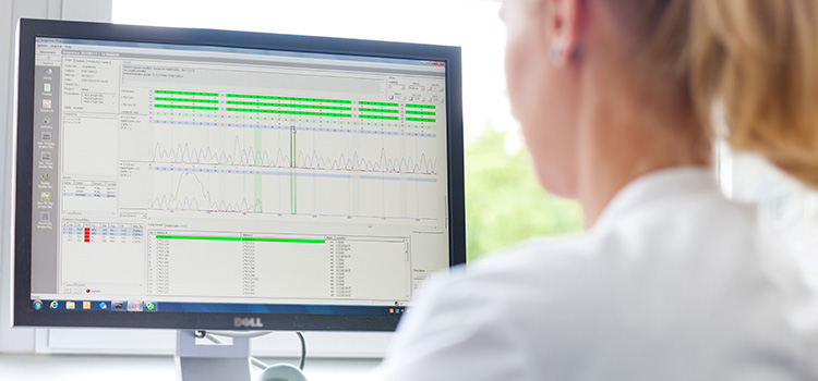 Mitarbeiterin  der Deutschen Stammzellspenderdatei vergleicht mit einem Matching-Programm am PC die HLA-Merkmale von Spendern und Patienten